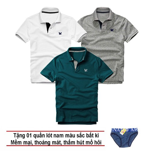 Áo thun nam logo mẫu mới, combo 3 áo [ trắng, xám đậm, xanh cổ vịt ] tặng kèm 1 quần lót nam