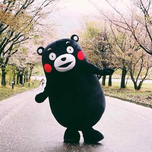 Mascot gấu đen