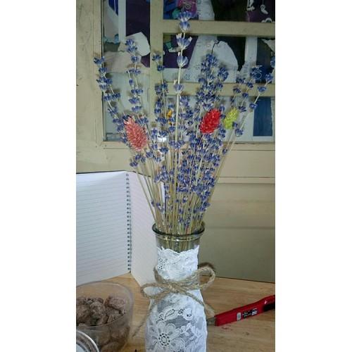 Combo lọ và hoa oải hương nk pháp mix pharalis