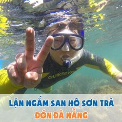 Tour 1N lặn ngắm san hô Sơn Trà - ăn trưa tự túc, đón tận nơi tại Đà Nẵng