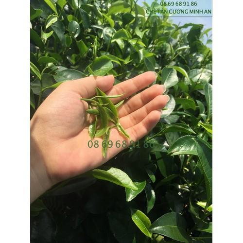 600g - đặc sản trà nõn tôm thượng phẩm - trà tân cương thái nguyên cao cấp - trà minh an - 12582471 , 20413422 , 15_20413422 , 397100 , 600g-dac-san-tra-non-tom-thuong-pham-tra-tan-cuong-thai-nguyen-cao-cap-tra-minh-an-15_20413422 , sendo.vn , 600g - đặc sản trà nõn tôm thượng phẩm - trà tân cương thái nguyên cao cấp - trà minh an