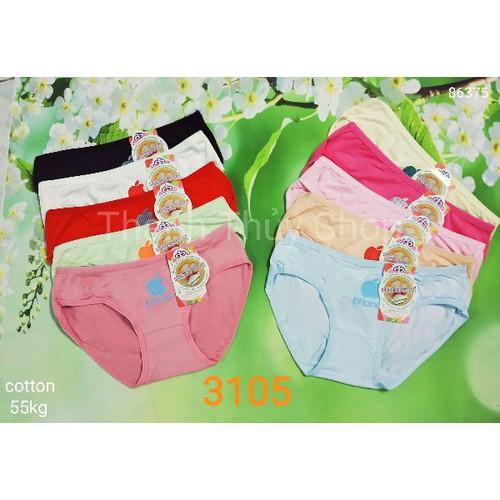 10 quần lót nữ cotton 3105 - 12139826 , 20685650 , 15_20685650 , 90000 , 10-quan-lot-nu-cotton-3105-15_20685650 , sendo.vn , 10 quần lót nữ cotton 3105