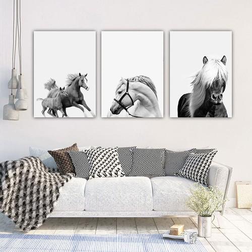 Bộ 3 tranh trang trí i tranh treo tường hắc bạch mã fm01sd253