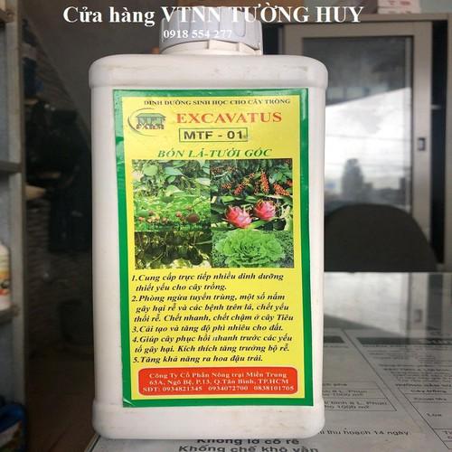Phân bón lá - tưới gốc : dịch trùn quế 1 lít
