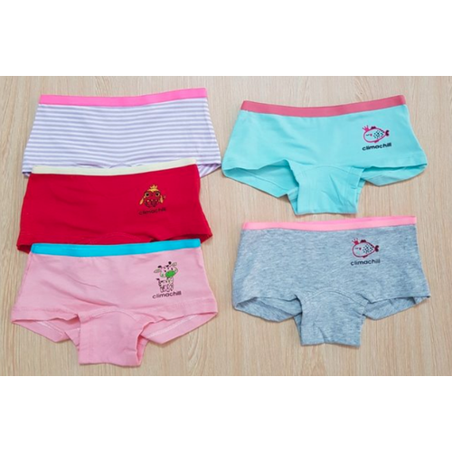Set 5 quần chíp bé gái, quần chip bé gái, quần lót bé gái - size 1-16 tuổi