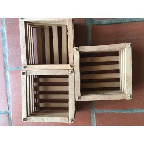 Combo 3 chậu gỗ vuông trồng lan kích thước ngang 15cm cao 6cm - 11637549 , 20746327 , 15_20746327 , 135000 , Combo-3-chau-go-vuong-trong-lan-kich-thuoc-ngang-15cm-cao-6cm-15_20746327 , sendo.vn , Combo 3 chậu gỗ vuông trồng lan kích thước ngang 15cm cao 6cm