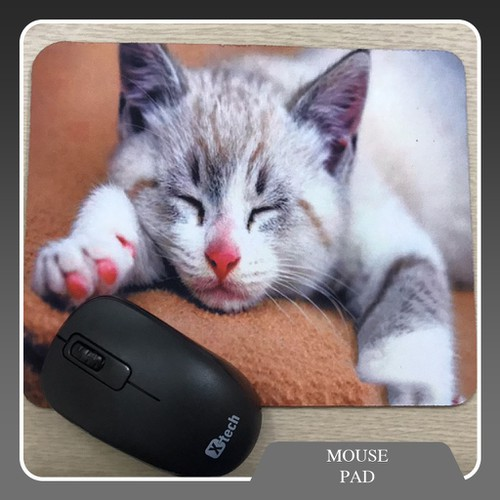 Bàn di chuột Meo Meo dễ thương