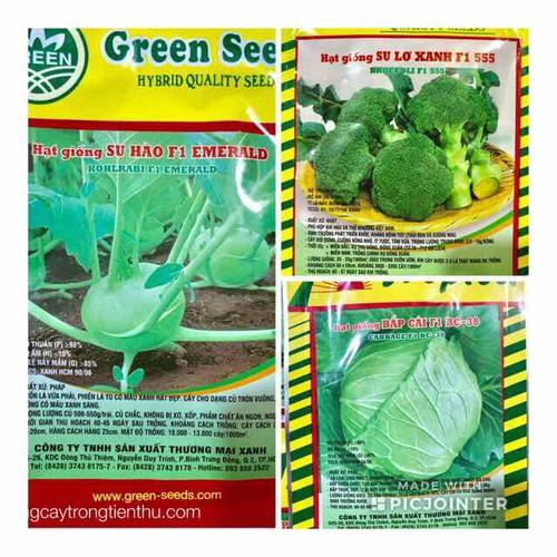 Combo 3 gói hạt  giống rau su hào cải bắp lơ xanh - 17401488 , 20857161 , 15_20857161 , 88000 , Combo-3-goi-hat-giong-rau-su-hao-cai-bap-lo-xanh-15_20857161 , sendo.vn , Combo 3 gói hạt  giống rau su hào cải bắp lơ xanh