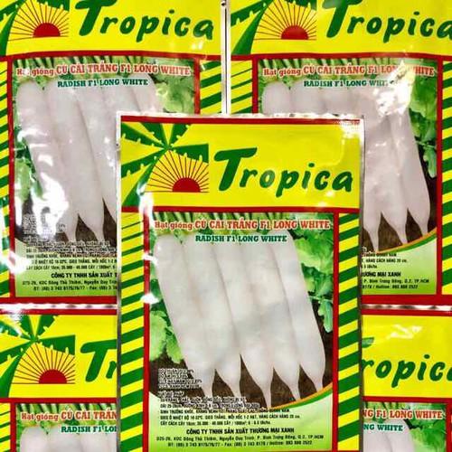 Combo-5 gói hạt giống củ cải trắng f1 long white