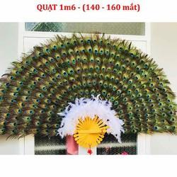 Quạt lông công 1m6 khoảng 150 mắt công đồ vật phong thuỷ