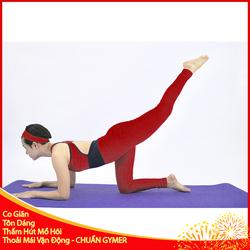 Set Đồ Tập Gym Nữ Toàn Thân Màu Đỏ Phối Đen Nổi Bật