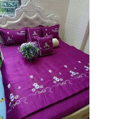 Ga giường đẹp, chăn mùa đông, chăn thu đông, bộ chăn ga thu đông