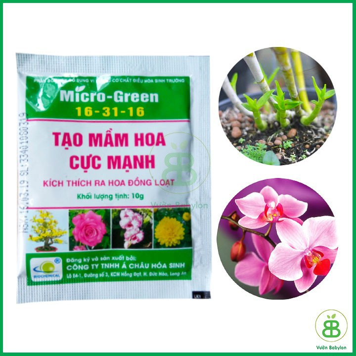 Kích Thích Ra Hoa Micro-Green 16 31 16