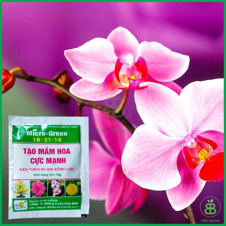 Kích Thích Ra Hoa Micro-Green