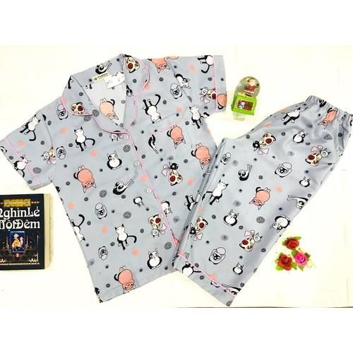 Đồ bộ mặc nhà pijama cao cấp họa tiết ngẫu nhiên, giao đúng màu thời trang Everest PJM lỡ CC-Xám