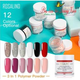 bột 3in1 bột nhúng, bột đắp móng, bột đắp hoa ROSALIND 10g - 612