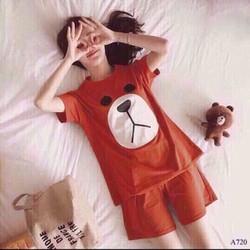 set áo và quần ngắn gấu cute
