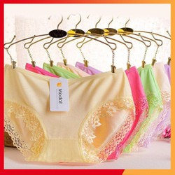 COMBO 10 quần lót nữ cotton Modal cao cấp