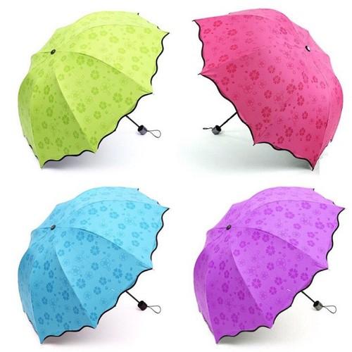 Dù đi mưa nở hoa siêu kute giá tốt