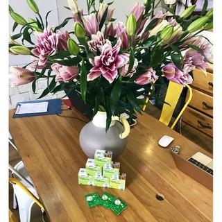 Bột Cắm Hoa LILY Tươi Lâu, Hiệu Longlife nhập khẩu Israel, COMBO 100 gói, giúp hoa LILY tươi lâu và 14 ngày không thay nước, không cắt tỉa gốc hoa - Bột Cắm Hoa Lily thumbnail