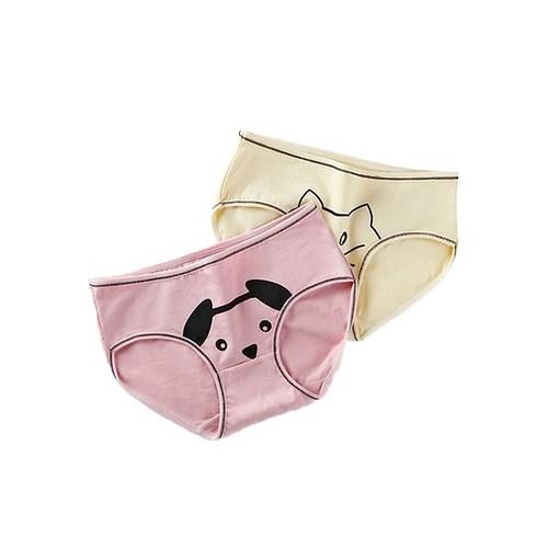 Combo 2 Quần lót nữ, quần lót cotton in hình dễ thương ZQC01