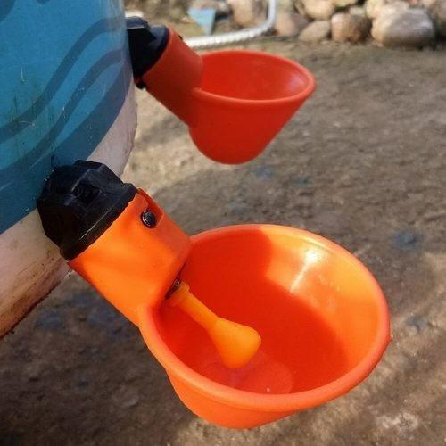 100 cốc uống nước tự động cho gà bộ 100 cái - 13195120 , 21295882 , 15_21295882 , 1200000 , 100-coc-uong-nuoc-tu-dong-cho-ga-bo-100-cai-15_21295882 , sendo.vn , 100 cốc uống nước tự động cho gà bộ 100 cái