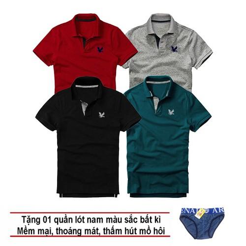 Áo thun nam logo mẫu mới, Combo 4 áo [ Đỏ đô, Xám đậm, Đen, Xanh cổ vịt ] tặng kèm 1 quần lót nam
