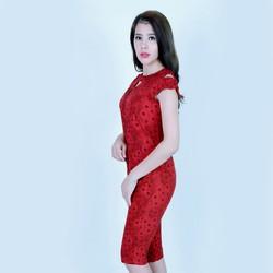 Bộ mặc nhà tole _lanh Vicci BN078 nhiều họa tiết
