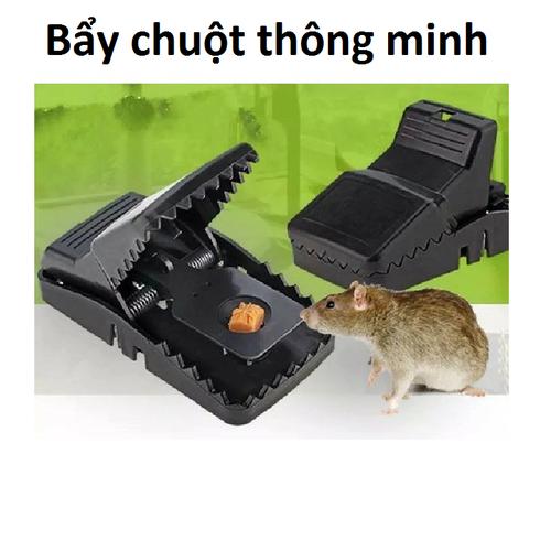 Bẩy chuột thông minh
