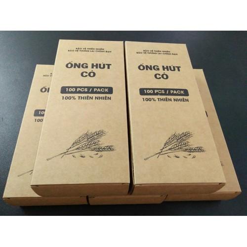 Combo 5 hộp 100 ống hút cỏ bàng - grass straws