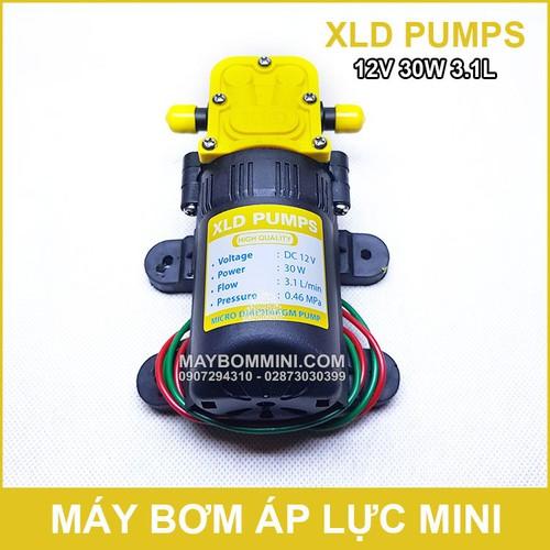 Bơm nước áp lực mini xld 12v 30w 3.1l không tự động