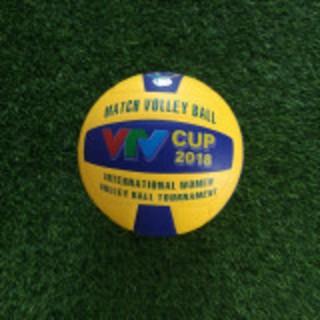 quả bóng chuyền vtv cup da pu cao cấp+tặng túi lưới+kim bơm - bc88 thumbnail