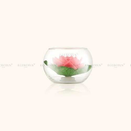 Ly hoa senviet