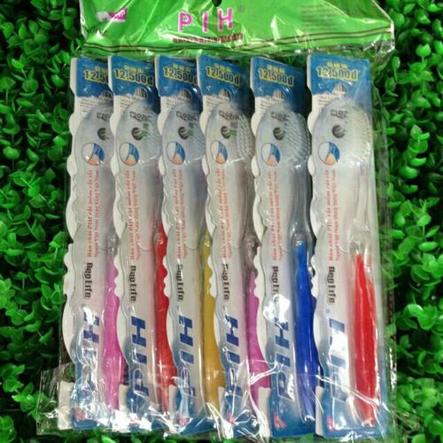 Combo 12 chiếc bàn chải đánh răng như hình