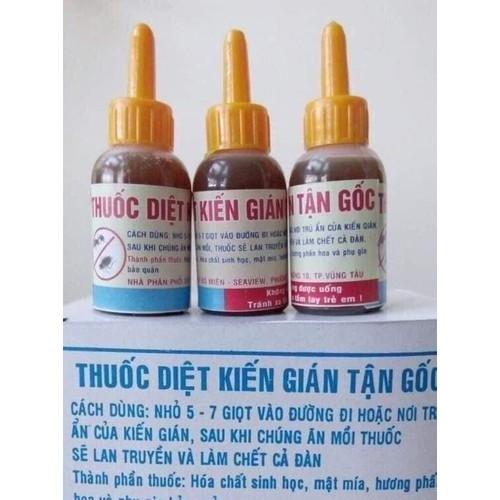 Diệt kiến gián tận gốc với 3 lọ thuốc sinh học an toàn hiệu quả
