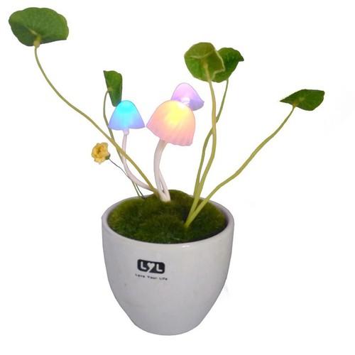 Đèn ngủ cảm ứng để bàn hình cây nấm đổi màu