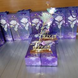 bỏ sỉ Hoa hồng hologram kèm đế chữ love hộp đựng túi xách quà 20 10