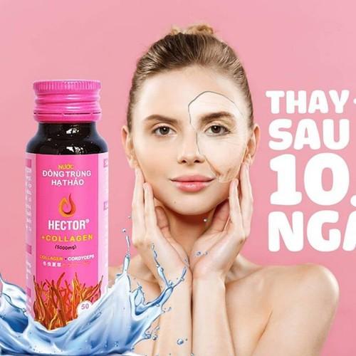 Sản phẩm trẻ hóa nhanh – nước đông trùng hạ thảo hector collagen chai 50ml
