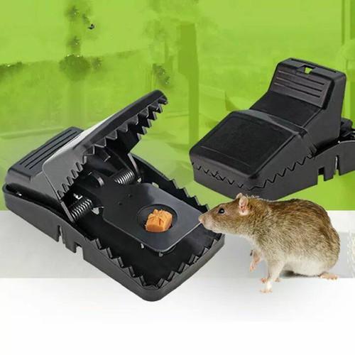 Set 2 dụng cụ bẫy chuột thông minh tiện ích tcp106bc