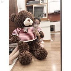 gấu gấu gấu bông teddy 1m
