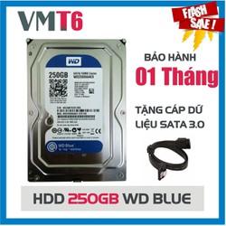 Ổ cứng HDD 250GB Western Digital 3.5inch - Bảo hành 1 tháng !