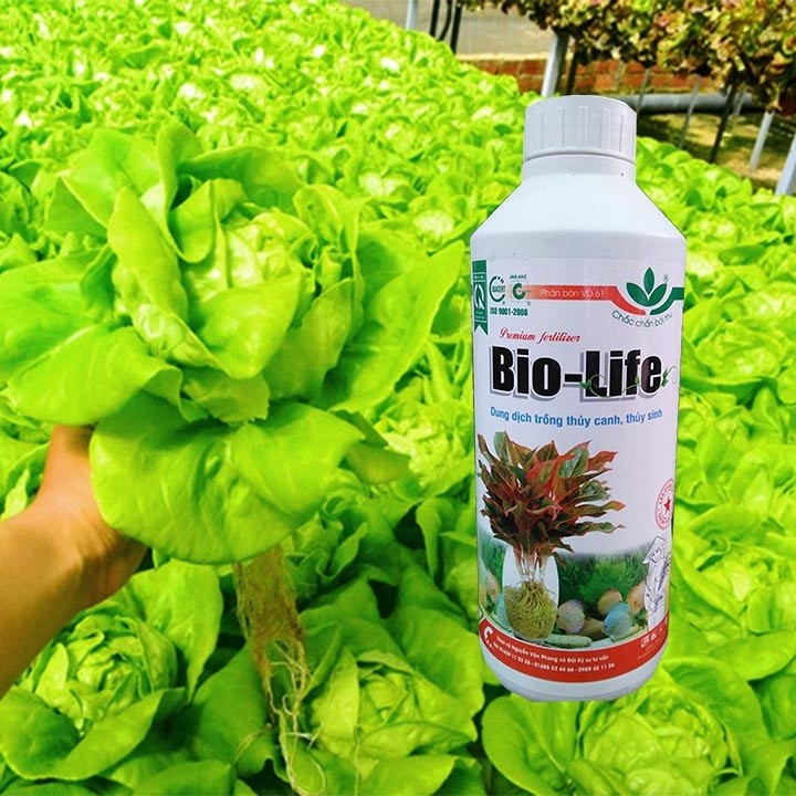 DUNG DỊCH THỦY CANH BIO - LIFE 1LIT