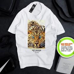 Áo phông nam nữ trắng – Shop bán Áo thun big size – Áo phông nam đẹp cho người béo