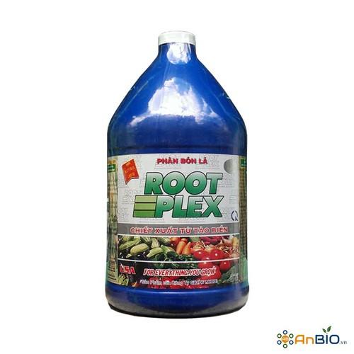 Phân bón lá grow more root plex   chiết xuất từ tảo biển can 3,8lit - 19446789 , 22168520 , 15_22168520 , 444000 , Phan-bon-la-grow-more-root-plex-chiet-xuat-tu-tao-bien-can-38lit-15_22168520 , sendo.vn , Phân bón lá grow more root plex   chiết xuất từ tảo biển can 3,8lit