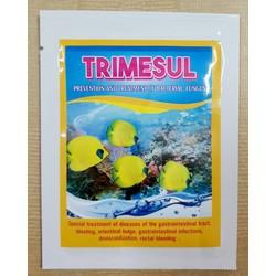 TRIMESUL: phòng và đặc trị bệnh do vi khuẩn cho cá cảnh