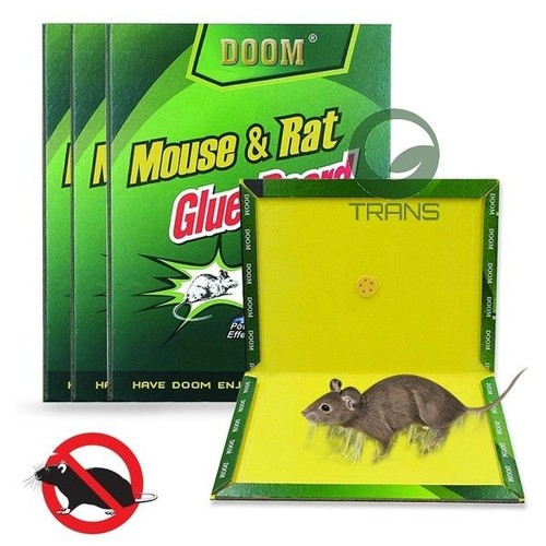 Keo dính chuột chất lượng hàng siêu dính mới