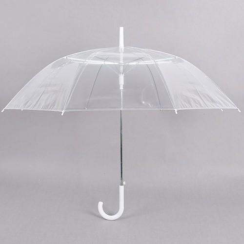 Ô dù trong suốt đi mưa loại đẹp