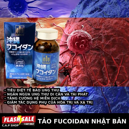 Tảo chống ung thư fucoidan nhật bản