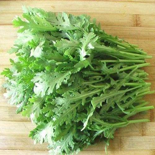 Hạt giống rau cải cúc nếp  giá rẻ