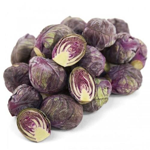 Hạt giống rau bắp cải tí hon tím  giá rẻ